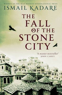 The Fall of the Stone City (BOK)