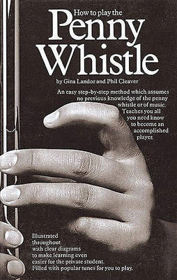 How To Play The Penny Whistle (BOK)