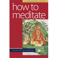 How to Meditate: A Practical Guide (BOK)