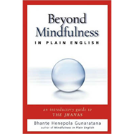 Beyond Mindfulness in Plain English: An Introductory Guide to Deeper States of Meditation (BOK)