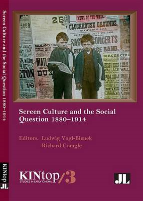 Screen Culture and the Social Question 1880 - 1914 (BOK)