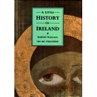A Little History of Ireland (BOK)