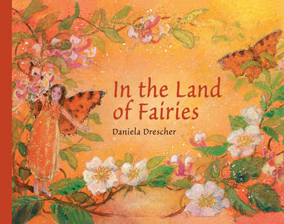 In the Land of Fairies (BOK)