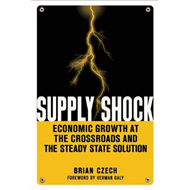 Supply Shock: Economic Growth at the Crossroads and the Steady State Solution (BOK)