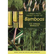 Timber Press Pocket Guide to Bamboos (BOK)