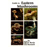 Guide to Eastern Mushrooms (BOK)