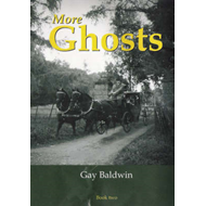 More Ghosts: More Ghosts of the Isle of Wight (BOK)