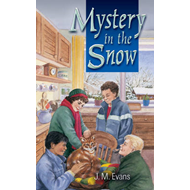 Mystery in the Snow (BOK)