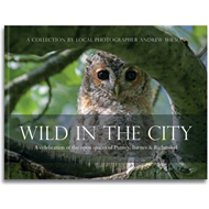 Wild in the City: A Celebration of the Open Spaces of Putney, Barnes and Richmond (BOK)