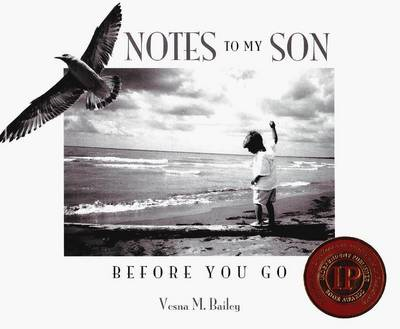 Notes to My Son (BOK)