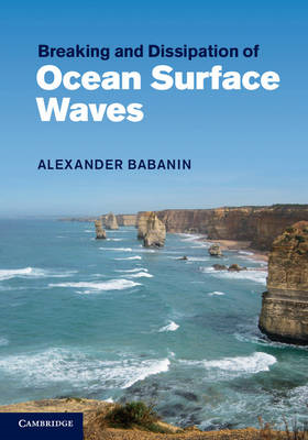 Breaking and Dissipation of Ocean Surface Waves (BOK)