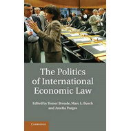 Politics of International Economic Law (BOK)