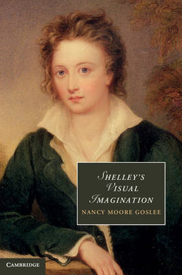 Shelley's Visual Imagination (BOK)