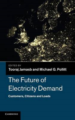 Future of Electricity Demand (BOK)