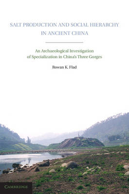 Salt Production and Social Hierarchy in Ancient China: An Archaeological Investigation of Specializa (BOK)
