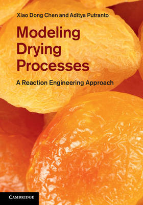 Modelling Drying Processes (BOK)