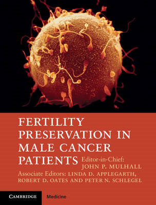 Fertility Preservation in Male Cancer Patients (BOK)