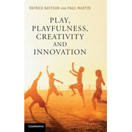 Play, Playfulness, Creativity and Innovation: How Playful Behaviour Drives Innovation (BOK)