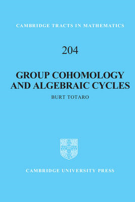 Group Cohomology and Algebraic Cycles (BOK)