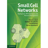 Small Cell Networks (BOK)