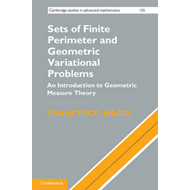 Sets of Finite Perimeter and Geometric Variational Problems (BOK)