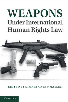 Weapons under International Human Rights Law (BOK)