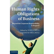 Human Rights Obligations of Business (BOK)