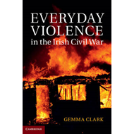 Everyday Violence in the Irish Civil War (BOK)