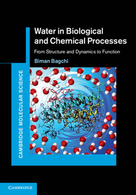 Water in Biological and Chemical Processes: from Structure and Dynamics to Function (BOK)