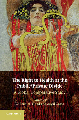 Right to Health at the Public/Private Divide (BOK)