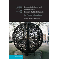 Domestic Politics and International Human Rights Tribunals (BOK)
