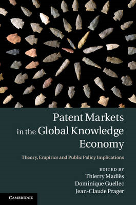 Patent Markets in the Global Knowledge Economy (BOK)