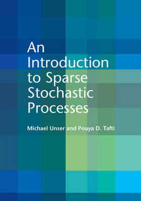 Introduction to Sparse Stochastic Processes (BOK)