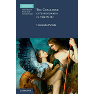 Challenge of Safeguards in the WTO (BOK)