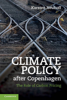 Climate Policy After Copenhagen: The Role of Carbon Pricing (BOK)