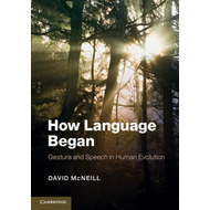 How Language Began (BOK)