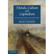 Metals, Culture and Capitalism: An Essay on the Origins of the Modern World (BOK)