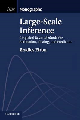 Large-Scale Inference (BOK)
