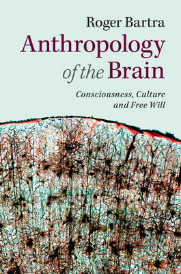 Anthropology of the Brain (BOK)