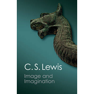 Image and Imagination (BOK)