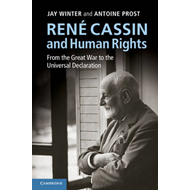 Rene Cassin and Human Rights: from the Great War to the Universal Declaration (BOK)