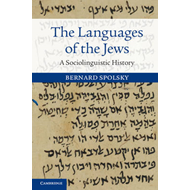 Languages of the Jews (BOK)