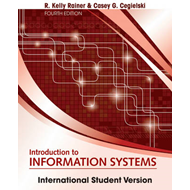 Introduction to Information Systems (BOK)
