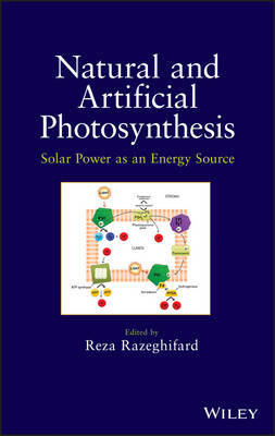 Natural and Artificial Photosynthesis: Solar Power as an Energy Source (BOK)