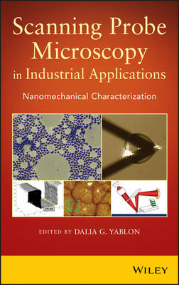 Scanning Probe Microscopy for Industrial Applications: Nanomechanical Characterization (BOK)