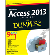 Access 2013 All-in-One For Dummies (BOK)