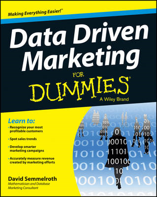 Data Driven Marketing For Dummies (BOK)