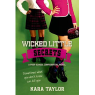 Wicked Little Secrets (BOK)