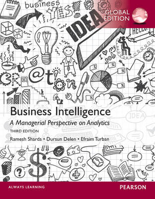 Business Intelligence: A Managerial Perspective on Analytics (BOK)