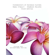 Fundamentals of Database Systems (BOK)